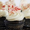 Dark Chocolate and Candy Cane Cheescake Cupcakes